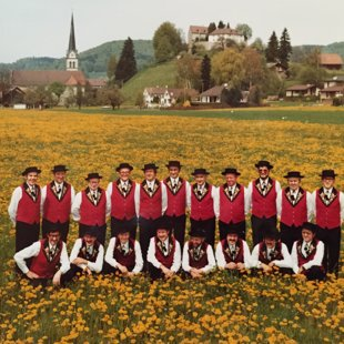 Trachenweihe 1982
